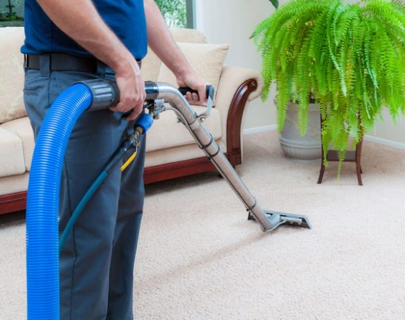 What Does a Professional Carpet Cleaner Do