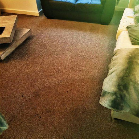 Carpet cleaning in Great Sankey, Warrington